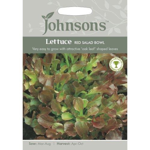Johnsons Seeds - Pictorial Pack - Vegetable - Lettuce Red Salad Bowl - 1200 Seeds