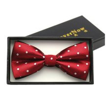 Fashionable Formal Clothes Wedding Party Ties Necktie Bow Tie, F