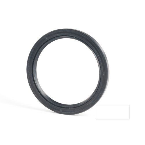 6x19x7mm Oil Seal Nitrile Double Lip With Spring