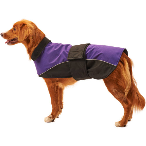 Dog Waterproof Reflective Coat-Purple Medium