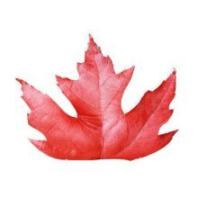 Simulation Leaf Pillow Creative 3D Plush Pillows For Sofa Office Nap, Maple Leaf