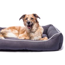 Dog Gone Smart Lounger Bed Pebble Grey  94x79cm