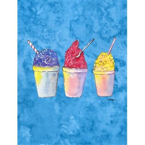 Carolines Treasures 8780CHF 28 x 40 in. Snowballs and Snowcones House Size Canvas Flag
