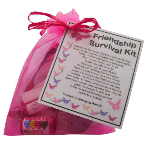 Friendship Survival Kit Gift | Friendship Keepsake Bag
