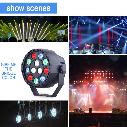 RGBW 12LED Stage Light DMX Auto Sound Master-slave Disco Party