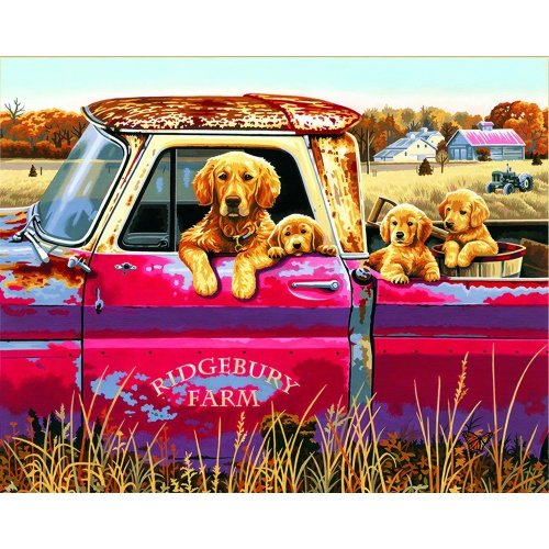 "Dpw91525 - Paintsworks Paint by Numbers 20"" X 12"" - Golden Ride"