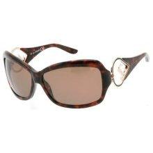 Just Cavalli Havana Ladies Sunglasses JC209S-24552J