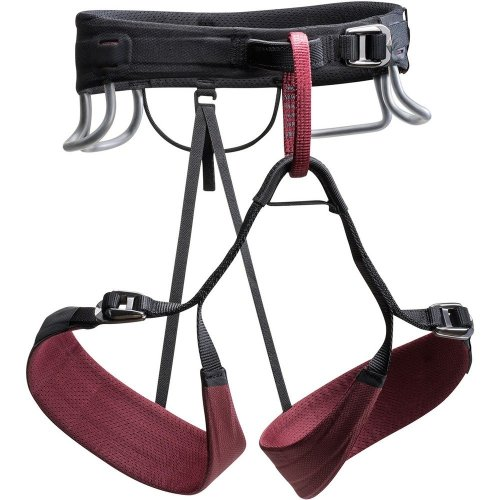 Black Diamond Womens Technician Climbing Harness Rhone (Medium)
