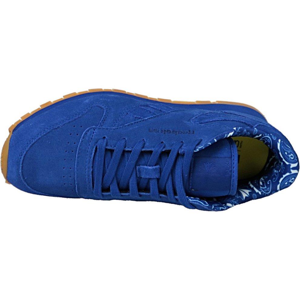 Reebok Classic Leather TDC BD5052 Kids Blue sneakers