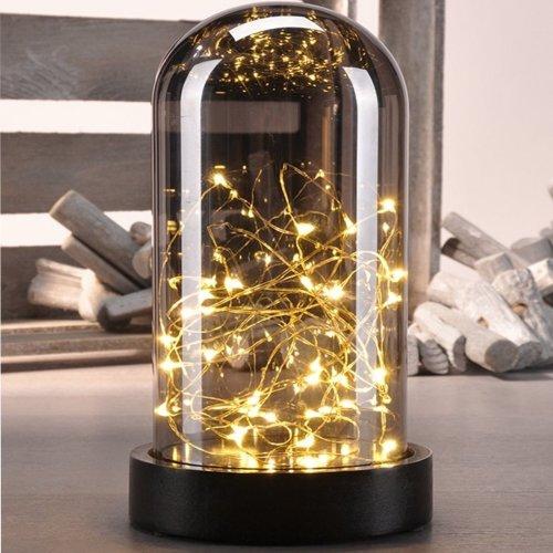 Glass Bell Jar & 30 Warm White LED Lights