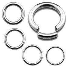 Seamless Segment Ring, Surgical Steel Universal Piercing Body jewellery