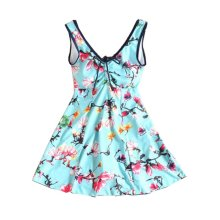 Hot Springs Small Chest Gather Swimsuit/Female Skirt Swimming Apparel