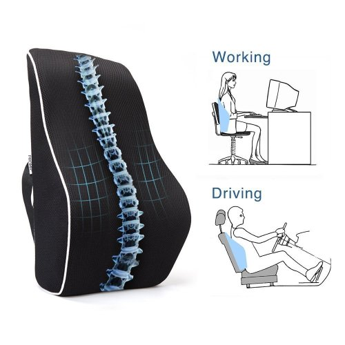 EPMIC Memory Foam Orthopedic Back Cushion, Lower Back Support Pad, Portable Ergonomic Back Cushion for Home, Office, Chair, Car and More