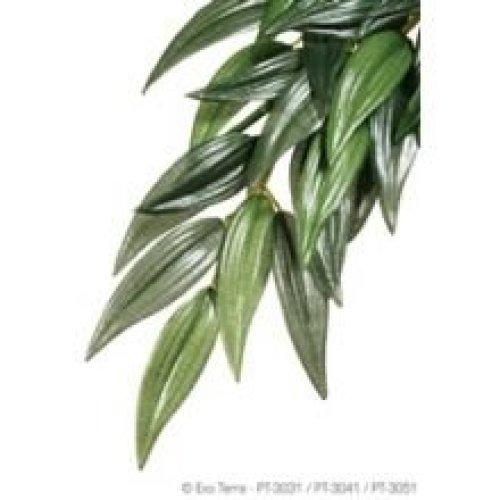 Exo Terra Silk Ruscus Plant (medium)