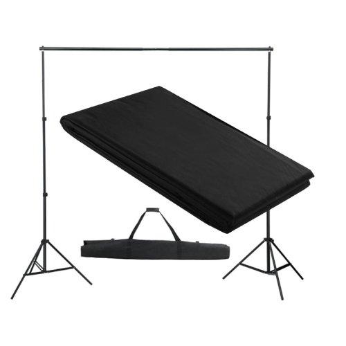 vidaXL Backdrop Support System 300x300cm Black Photography Studio Background