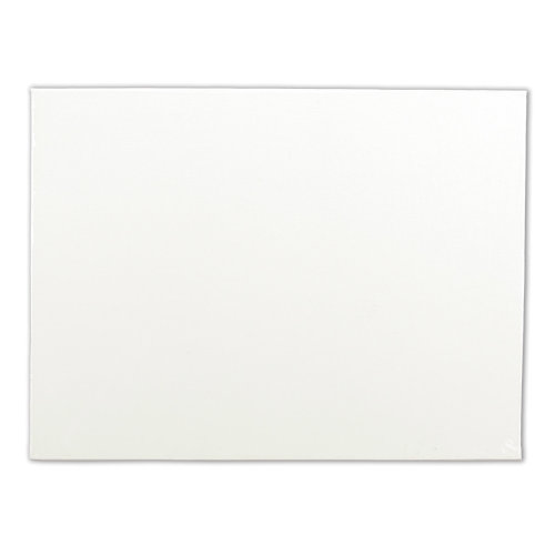 "Artists' Quality Canvas Board-12""X16"""