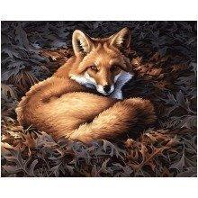 Dpw91380 - Paintsworks Paint by Numbers - Sunlit Fox
