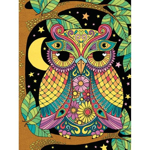 Dpw91611 - Paintsworks Pencil by Numbers - Night Owl