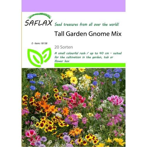 Saflax  - Tall Garden Gnome Mix - 20 Sorten - 1000 Seeds
