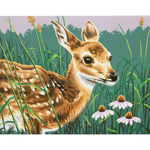 Dpw91447 - Paintsworks Paint by Numbers - Fawn and Flowers