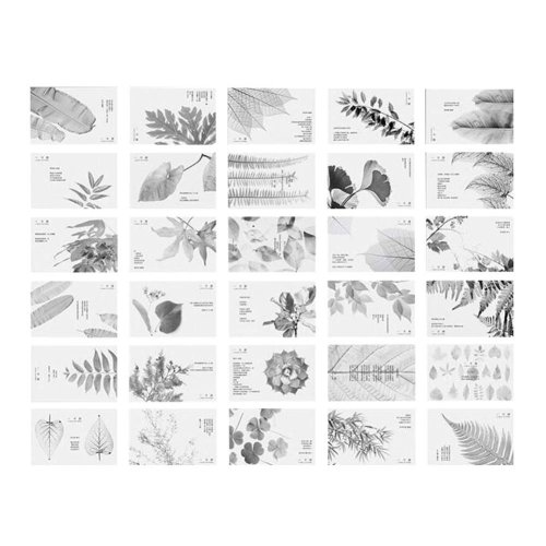 30 Pieces of a Set Natural Plants Theme Postcards Greetings Card