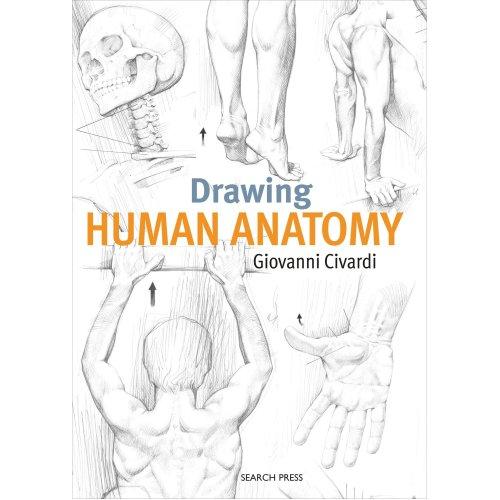 Search Press Books-Drawing Human Anatomy