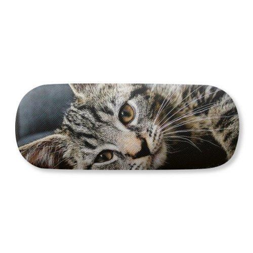 Cat Stripes Kitty Animal Relax Adorable Glasses Case Eyeglasses Clam Shell Holder Storage Box